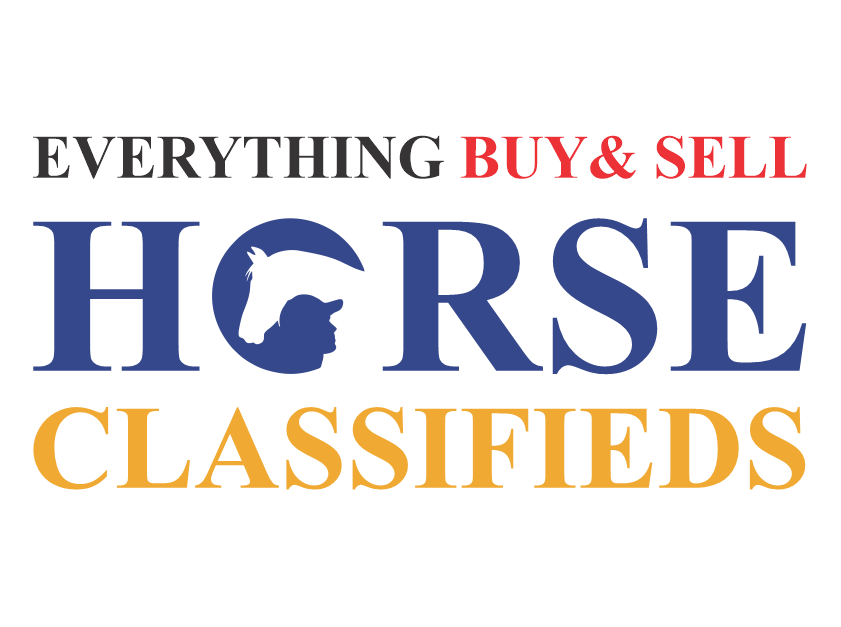 everything buy and sale horse classifieds